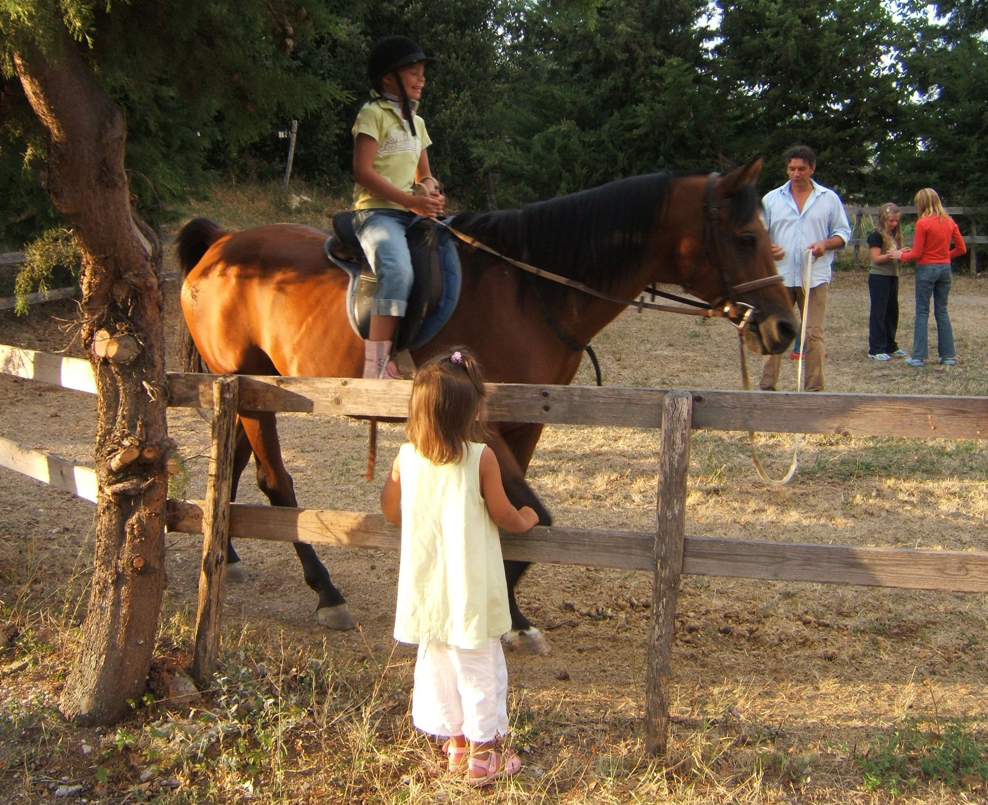 Horse back riding for kids in Marche Italy