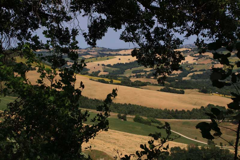 beautiful rural view in Marche Italy