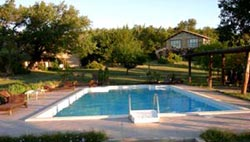 Agriturismo marche con piscina cavalli ed attivit nel - Agriturismo con piscina nelle marche ...