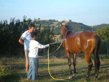 holiday accommodations with horses in Italy