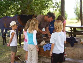 horse care at farm holiday